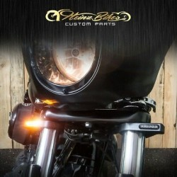 LIQUI MOLY Motorbike Engine Flush 250 ml